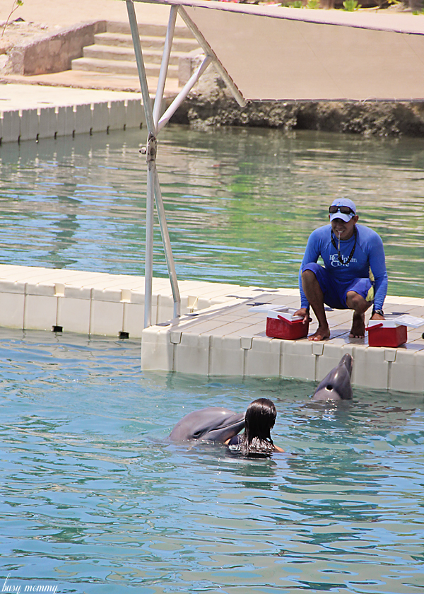 Dolphin Cove. You must go!!