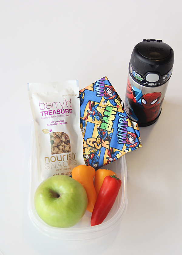 Kids lunch with reusable sandwich bag and water bottle.