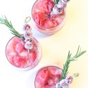 Cranberry Sorbet Cocktails