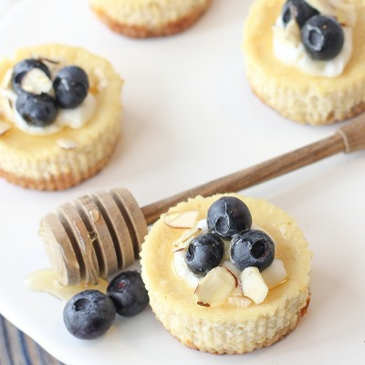 Mini Greek Yogurt Cheesecakes with Blueberries and Honey